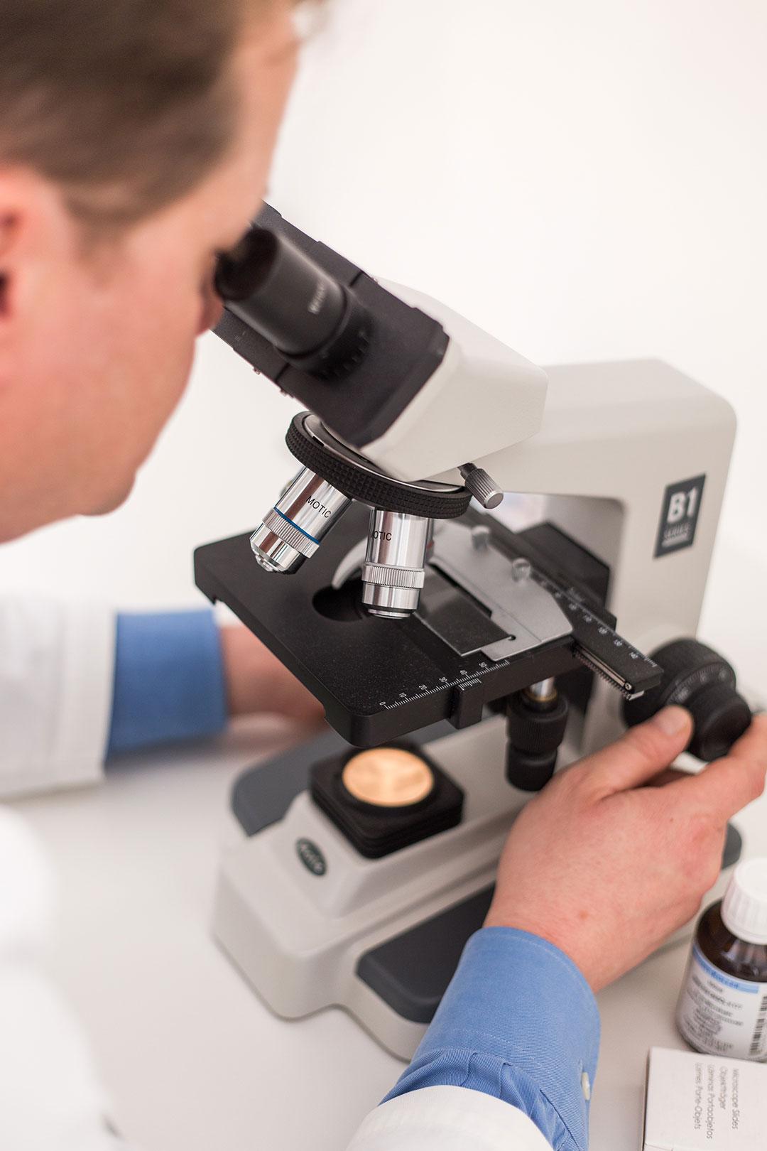 Untersuchung am Mikroskop
